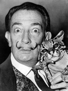 Salvador Dali with Babou, the ocelot and cane. 1965. (via Wikimedia Commons)