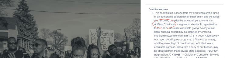The National Pulse: EXCLUSIVE: Black Lives Matter